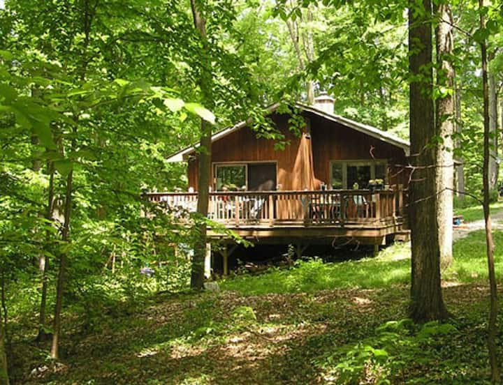 Whitman Woods - A Berkshire Vacation