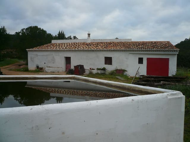 Renewed old house on a 12 acre organic orange farm - Silves - Villa