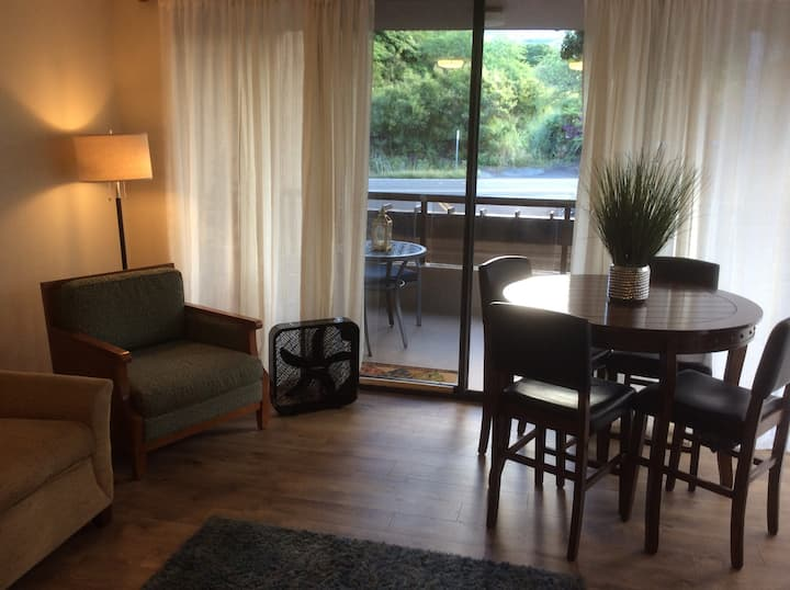 Near town!Beautiful Remodeled Condo Sleeps up to 4