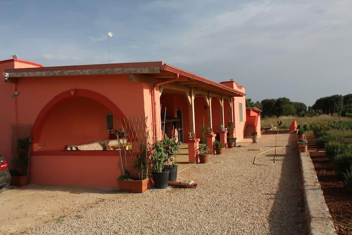 Entdecke die Schönheit Apuliens - Manduria - Casa