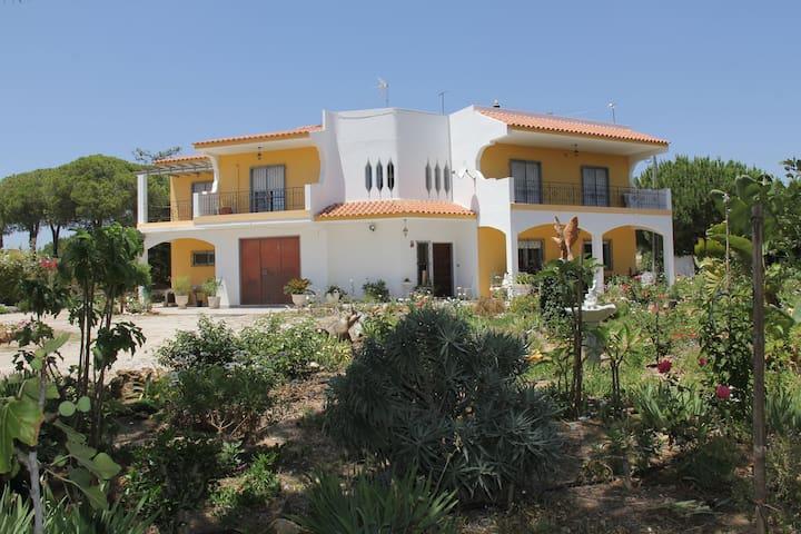 Marias House - Olhão - House