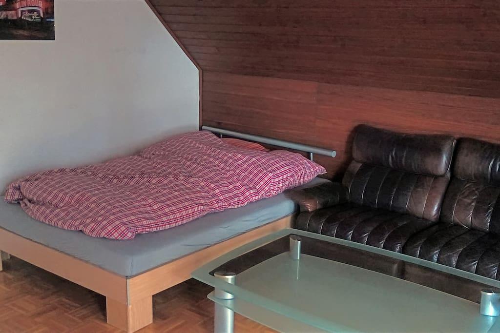 Schlaf-/Wohnzimmer 1