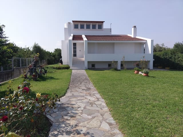 Holiday home next to orange tree orchard, 185 sq.m