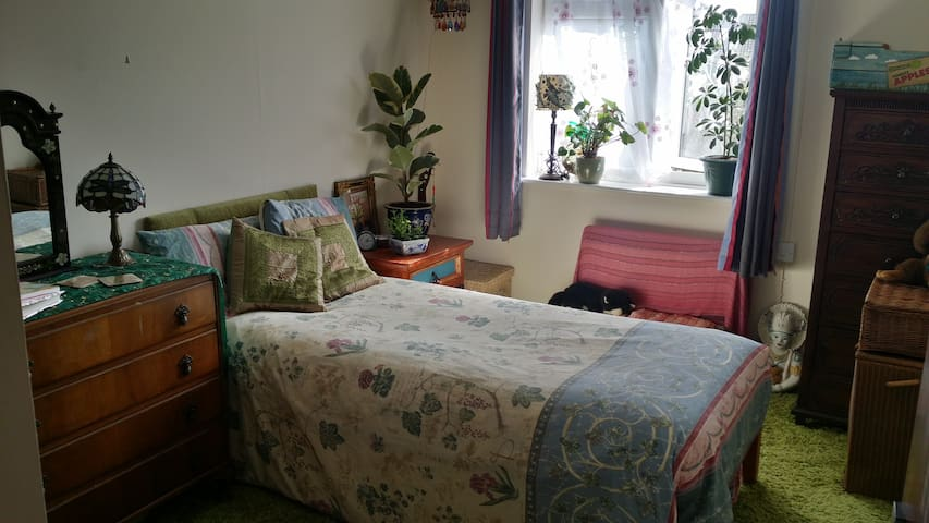 Single private room in cosy bungalow, Bruton - 브루턴 - 방갈로