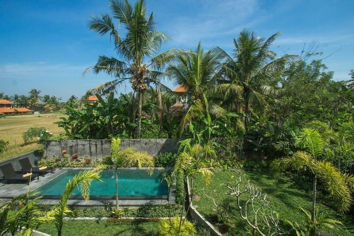 Anugrah House with swimming pool and kitchen