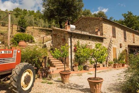 Fienile di Vignanova in Alta  Maremma (Montieri)