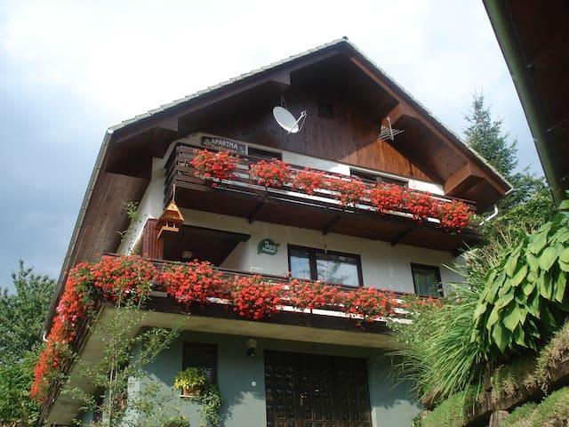 Apartment Podlogar Golica near Bled