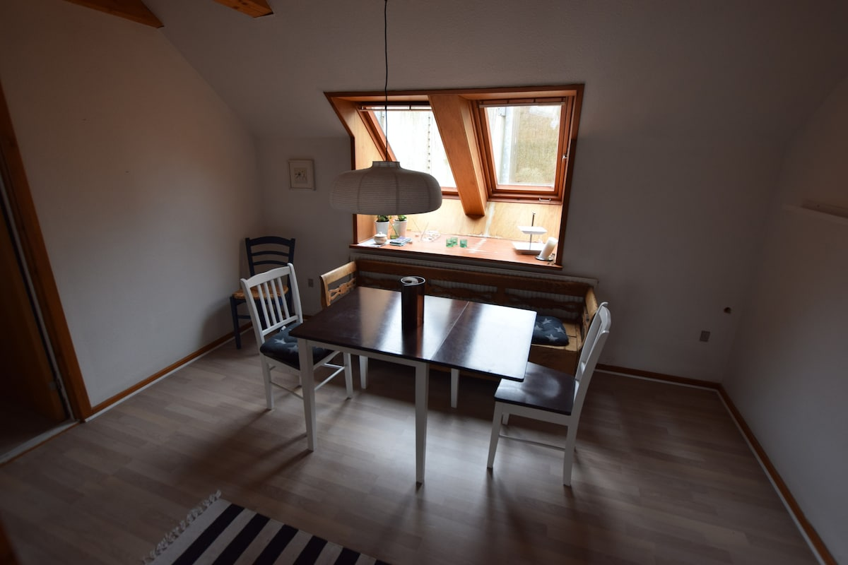 Sehr Ruhig Grosse Haus Im Rold Wald, WiFi,   Houses For Rent In Skørping,  Denmark