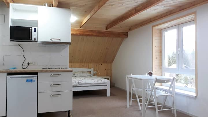 Superior Apartment in Kranjska Gora