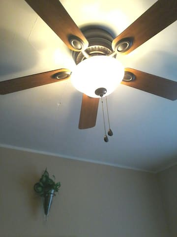 ceiling fan, additional floor fan, and heater are available