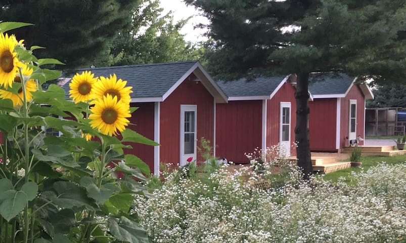 Farm Cabin at The Country Experience - Elizabeth - Hytte
