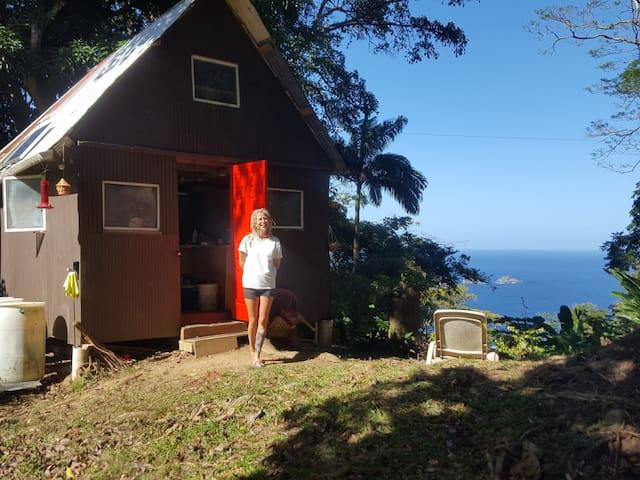 Tony's Offgrid Cabin Getaway