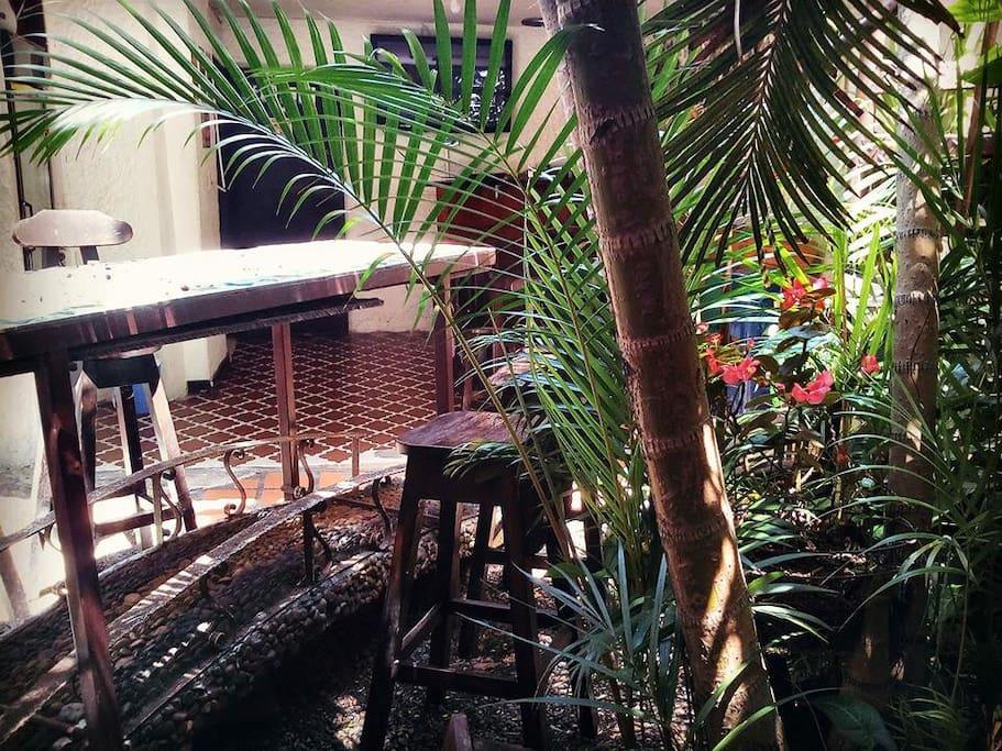 Palm Tree Hostel Medellin ofrece habitaciones privadas y dormitorios confortablemente amoblados. Todas las habitaciones cuentan con cómodos colchones, dos almohadas, toallas y sabanas...      Durante muchos años Palm Tree Hostal ofrece a los viajeros un lugar muy acogedor con un ambiente tranquilo, seguro, precios económicos y un muy buena información acerca de Medellín.     Bienvenidos a Palm Tree Hostal Medellin