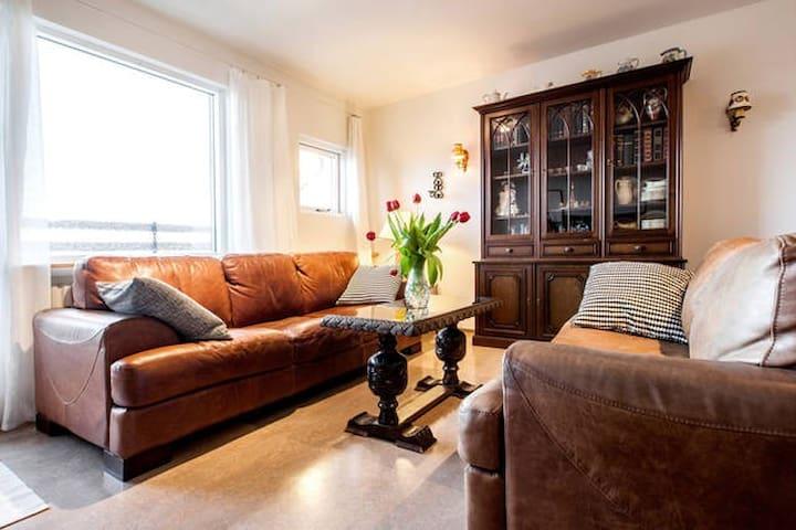 A cozy apartment next to facilities. - Reiquiavique - Apartamento