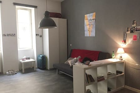 Appartement charmant au coeur du centre ville - Grenoble