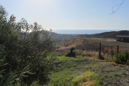 Maisonnette parmi les oliviers. - Brancaleone Marina - House
