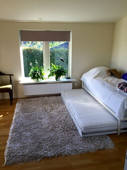 The room with two single beds. Possible to have an air mattress to accommodate another 2 people.