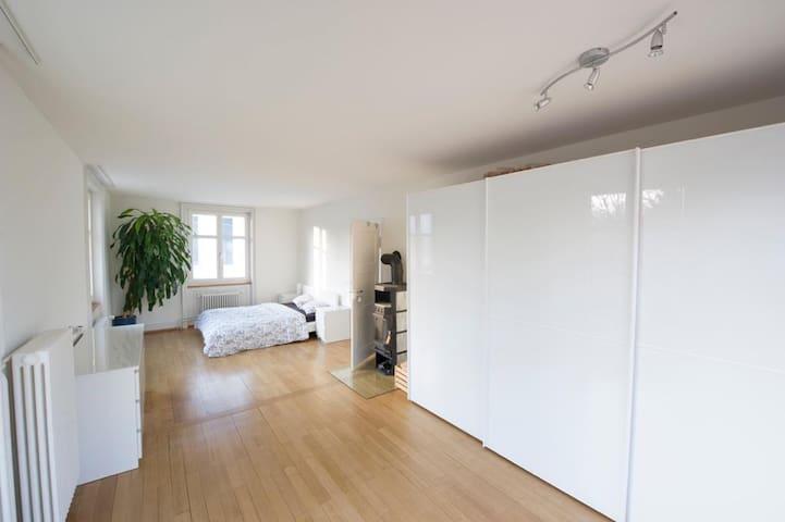 30 m2 Grosses Helles Zimmer Basel Land - Allschwil - Apartament