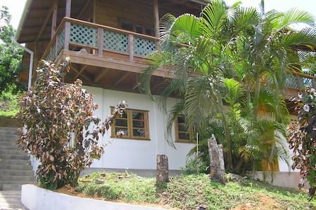 Leapfrog, Castara, Tobago - Castara