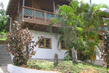 Leapfrog, Castara, Tobago - Castara - Flat