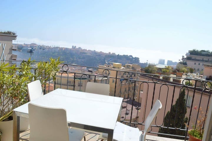 Monaco 1 bed room apartment-see & palace view-calm