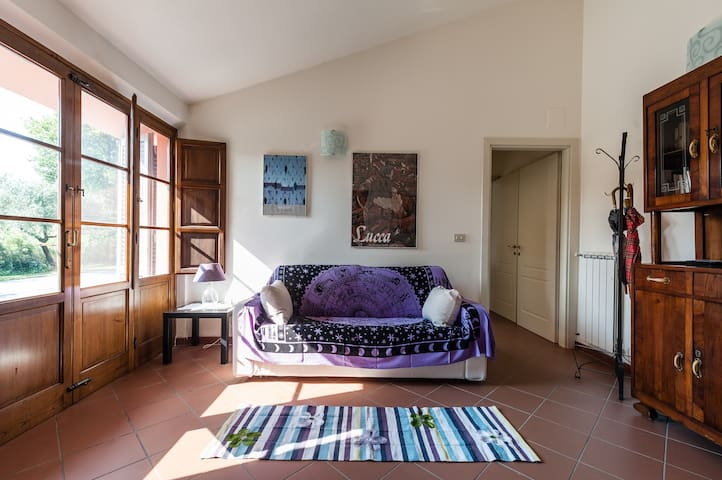Warm and cosy house in Versilia