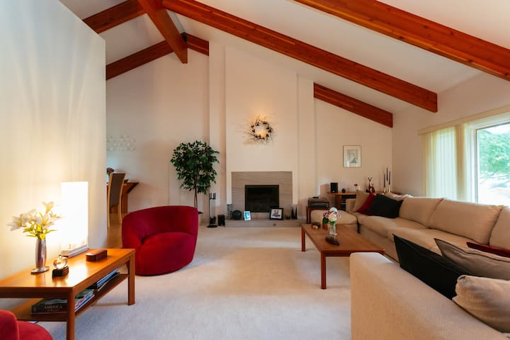 Living room w/ touch start gas fireplace- common space.