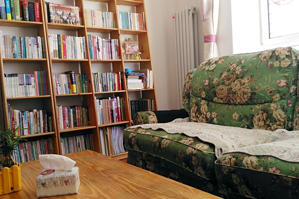 阳光充沛的客厅,满架书籍,舒适的沙发