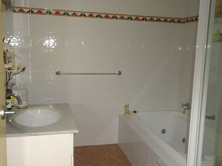 Guest bathroom includes spa, shower and toilet