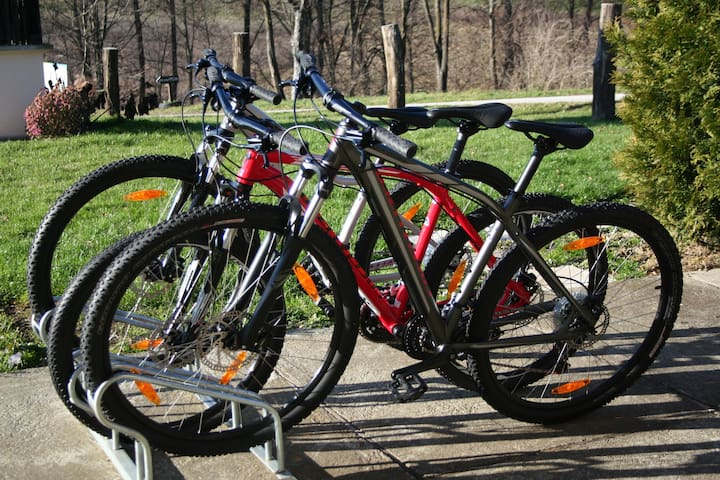 Cycling destination with bike rental options