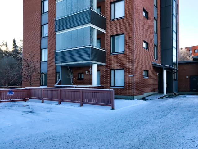 One bedroom apartment in Oulu, Pesätie 20 (ID 11668)