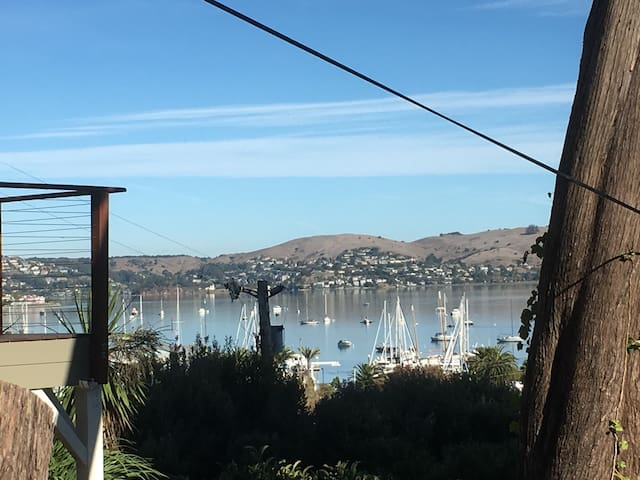 Amazing Ocean view in Sausalito for monthly rental