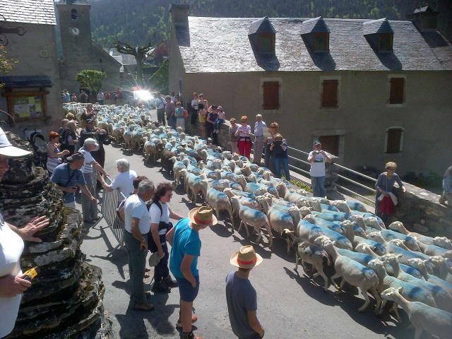 Jolie grange Aulon (Saint Lary Soulan) - Aulon - Chatka w górach