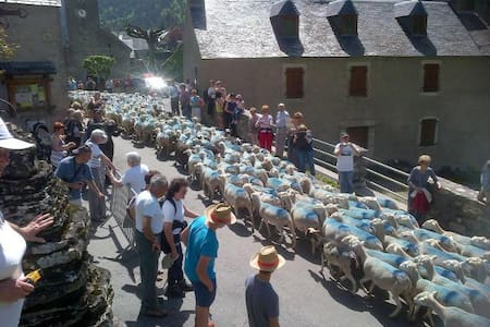 Jolie grange Aulon (Saint Lary Soulan) - Aulon - กระท่อมบนภูเขา