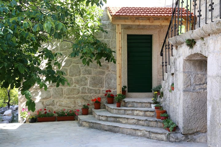 Authentic stone house with Pool - Žeževica - 一軒家