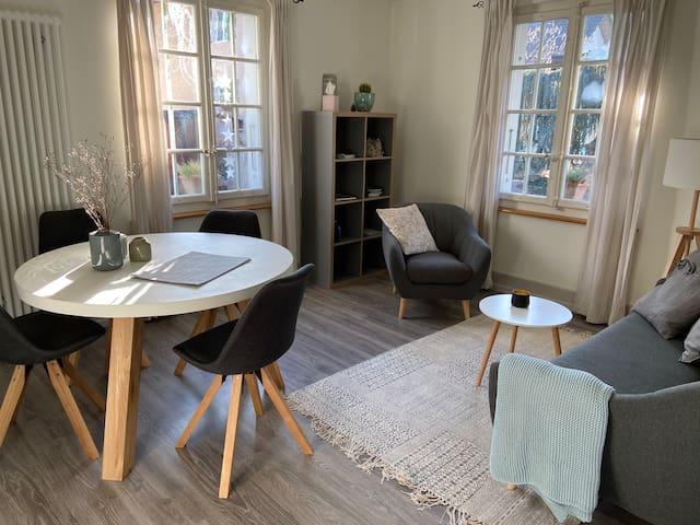 ideal gelegene, neu renovierte 3-Zimmer Wohnung