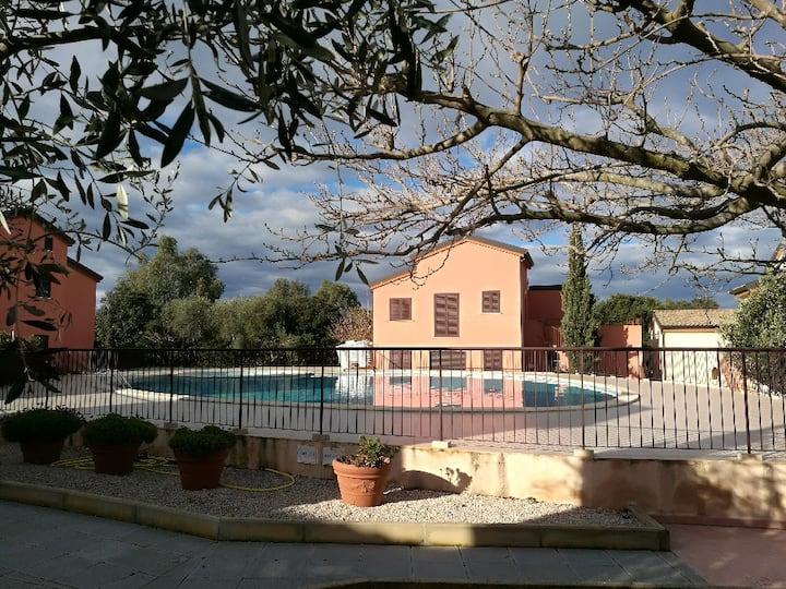 Lozari , Balagne T2 , piscine, plage700 m