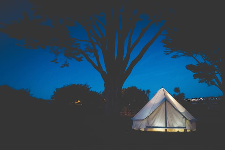 Rosecliston Park - Newquay - Tent