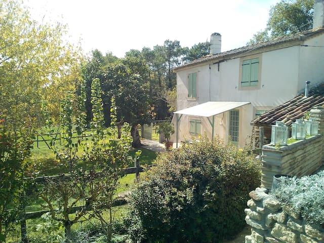 Gîte meublé en pleine campagne en Sud Gironde