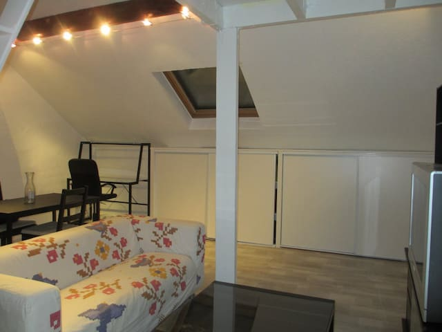 studio cosy sous les toits - Reims - Apartment