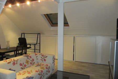 studio cosy sous les toits - Reims