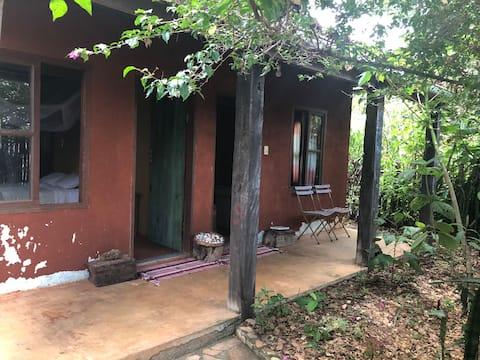 Casa Floresta - Milho Verde