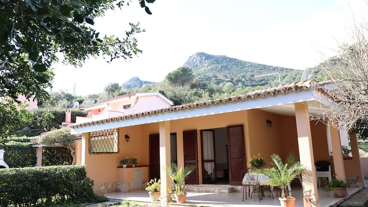 Nice little house  in Costa rei