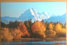 Photo of postcard with great view of Mt Cook/Aoraki, only 40 minutes away.