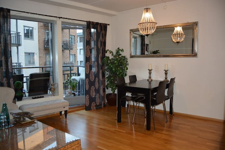 Amazing apartment in central Oslo.