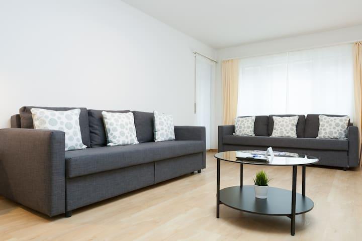 Lion 1 - 3 bedroom apartment - Lion Monument