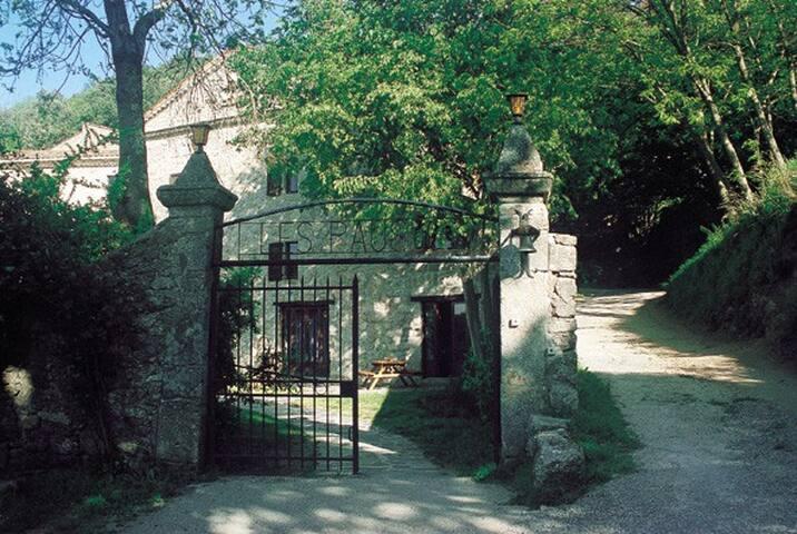 Chateau des Pauses,  Framboisier
