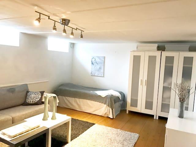 Fresh and spacious room near the Botanical garden - Lund - Villa