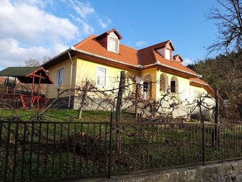 Csobogós Guest House in Mályinka