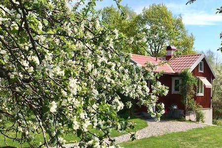 Mysig stuga i lummig trädgård vid Gavleån i Gävle
